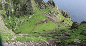 Skellig Michael. Photograph: An Taisce