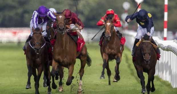 Image result for stewards enquiry horse racing