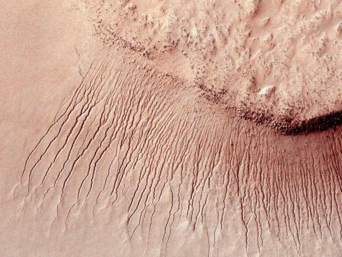 Portions of the Martian surface shot by Nasa's Mars Reconnaissance Orbiter show many channels from about one metre to 10 metres wide on a scarp in the Hellas impact basin.  Researchers found tell-tale fingerprints of salts that form only in the presence of water in narrow channels cut into cliff walls throughout the planet's equatorial region. Photograph:   Reuters/Nasa/JPL-Caltech/University of Arizona