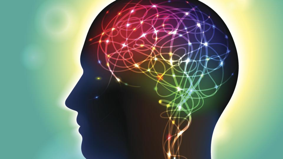 How does the brain work, and what happens when it doesn\'t?