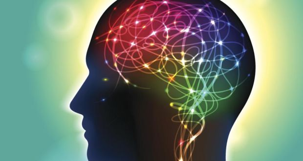 How does the brain work, and what happens when it doesn't?