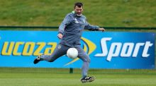 Roy Keane has brushed away any concerns over Robbie Keane's availability. Photograph: Donall Farmer/Inpho