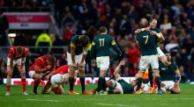 Brutal South Africa a bridge too far for valiant Wales