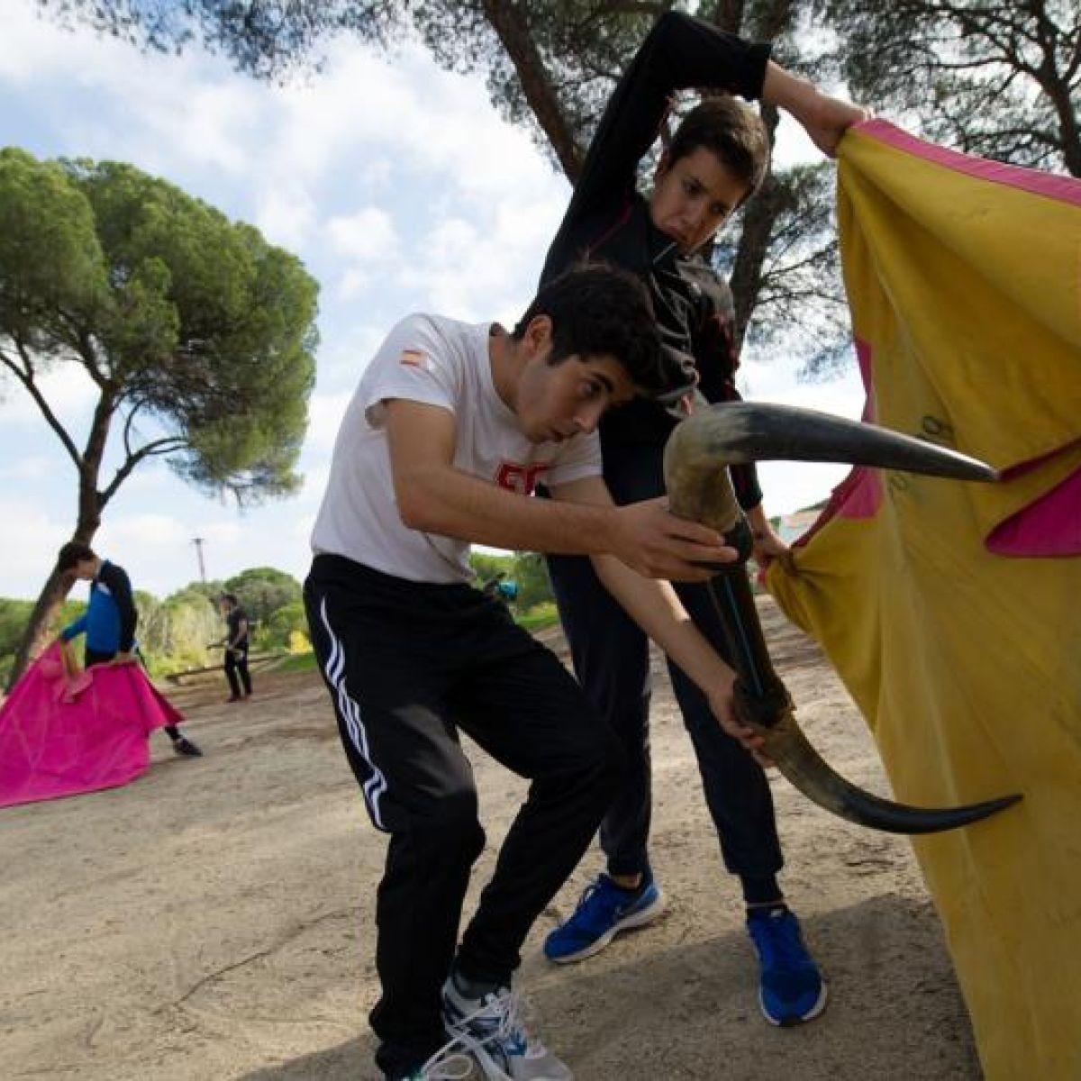 Backlash against bullfighting courses in Spanish schools