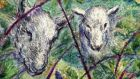 Heads down: the ewes turned their rumps to the wind. Illustration: Michael Viney