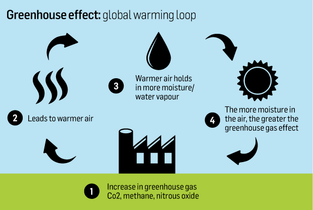 Importance Of Human Produced Greenhouse Gases