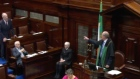 Peter Mathews removed from the Dail