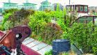 Compost bins and beehive nestle in the floating orchard barge in London created by kitchen gardener Nick Lacey – one of the innovative kitchen gardens that features in Lia Leendertz's book, My Tiny Veg Plot