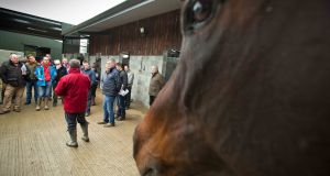 The Launch of the 2015 Leopardstown Christmas Festival took place at Gordon Elliot's Yard, Cullentra House, Longswood, Co. Meath, on Tuesday. Inpho's Morgan Treacy was there, capturing some great images.