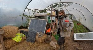Coline Le Pape working on the farm at Cloughjordan ecovillage. Photograph: Alan Betson/The Irish Times