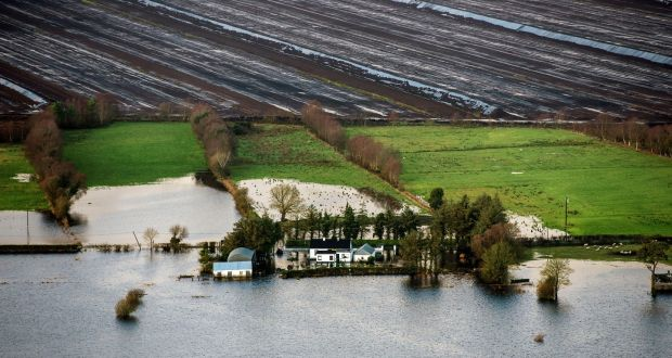 Flooding this week along the banks of the Shannon river near Athlone town. Photograph: Brenda Fitzsimons/The Irish Times