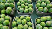 Culinaria: JP McMahon's sprout appeal