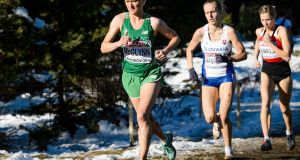 December 2014  </br> 