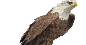 Top lot at an auction of the personal effects of Margaret Thatcher was a model of an eagle, given to her by Ronald Reagan (£266,500)
