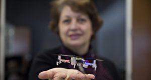 Dr Naira Hovakimyan of the University of Illinois with a small drone that may eventually be able to carry out household tasks, like retrieving a bottle of medicine, for older adults. Photograph: Daniel Acker/The New York Times