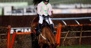 Willie Mullins trained a staggering eight winners at the 2015 Cheltenham festival - but Annie Power wasn't one of them. Photograph: Getty