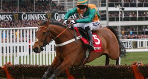 Cole Harden ridden by Gavin Sheehan clears the last fence on the way to winning the Ladbrokes World Hurdle  at Cheltenham last year. Photograph: Alex Livesey/Getty Images