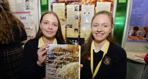 BT Young Scientists 2016 Diana Bura and Maria Louise Fufezan, from Loreto Secondary School Balbriggan, with their project at the 52nd BT Young Scientist & Technology Exhibition at the RDS. Photograph: Alan Betson/The Irish Times