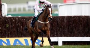Vautour is one of a record 23 Irish entries for the Ryanair Chase at Cheltenham. Photograph: Getty