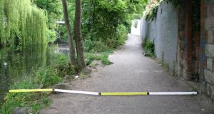 Tight fit: one of Dodder Action group's examples of the four-metre width of the proposed greenway