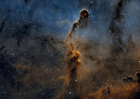 The Elephant's Trunk nebula, photographed from Spain, is a concentration of interstellar gas and dust within the much larger ionized gas region IC 1396 located in the constellation Cepheus about 2,400 light years away from Earth. Photograph: Brendan Kinch