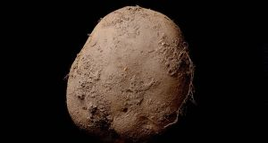 The picture of the potato, which has sold for €1m, propelling it into the top 15 most expensive photographs ever sold.