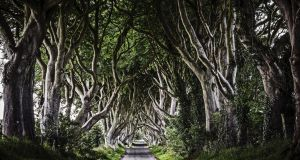 Game of Thrones: Line of interlinking Beech trees known on the show as the Dark Hedges were damaged by Storm Gertrude