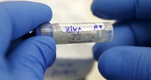 Zika virus is spread through the bite of a mosquito that is in certain countries but which is not present in Ireland, HSE said. Photograph: Mariana Bazo/Reuters