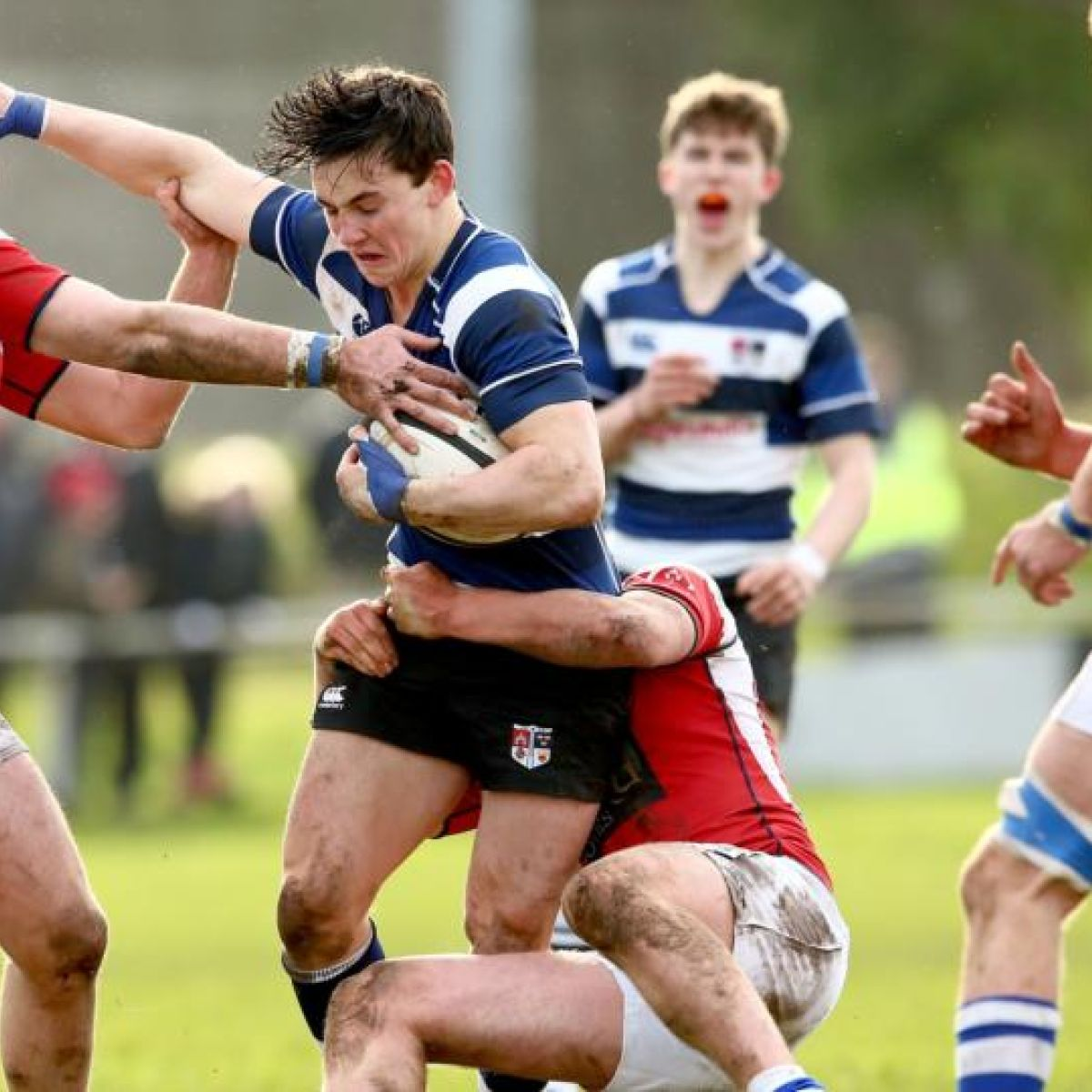 Munster schools senior cup betting on sports forex spread betting brokers mt45