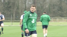 Joe Schmidt picks CJ Stander to face Wales