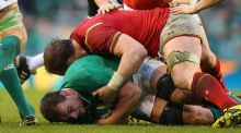Rhys Ruddock replaced Tommy O'Donnell during Ireland's Six Nations draw with Wales. Photograph: Inpho