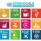 Sustainable Development Goals: Getting 193 countries to sign off on   2030 Agenda was widely considered a major achievement for the UN while also strengthening Ireland's reputation as a serious player on international development stage