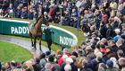 Crowds watch Flemenstar in the parade ring  at the Leopardstown Christmas Festival. Photograph: Dara Mac Dónaill