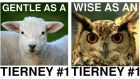 Dublin Bay South candidate Eoin Tierney has produced a series of attractive animal-themed posters.