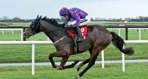 Arctic Fire is one of a number of big names set to miss the Cheltenham Festival. Photograph: Inpho