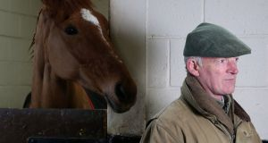 Willie Mullins is likely to supplement Annie Power fo rthe Cheltenham Champion Hurdle. Photograph: PA