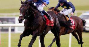 Jack Hobbs won the Irish Derby in 2015. Photograph: Inpho