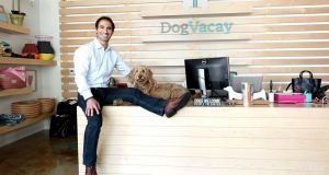Aaron Hirschhorn of DogVacay which matches pet owners with care takers and is cheaper than traditional boarding/kennels