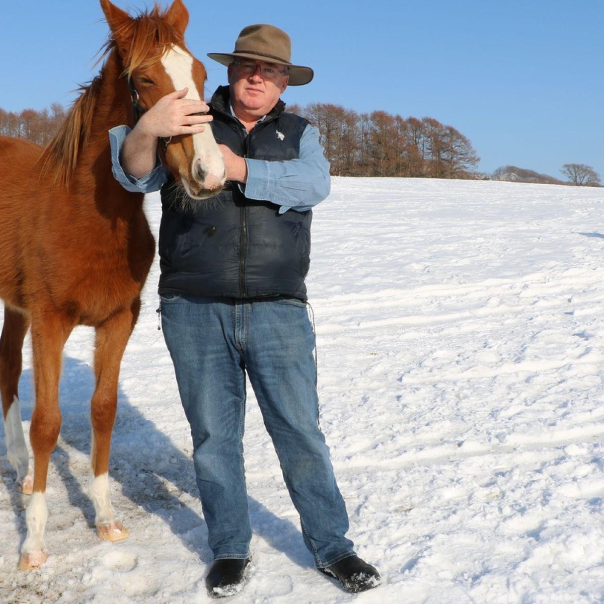 Wild Geese: Harry Sweeney, owner of Paca Paca stud farm