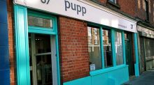 Meal Ticket: Pupp, Clanbrassil St, Dublin - great for pooches and humans to chill