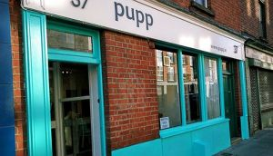 Pupp on Clanbrassil St in Dublin: two paws up