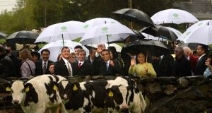 Chinese premier Li Keqiang with his wife, Madam Cheng, and Taoiseach Enda Kenny on Garvey's farm in Gortbrack, Co Mayo, in May last year. Photograph: Cyril Byrne