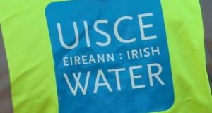 Irish Water aims to save enough water to supply Wicklow for a year by repairing leaks.