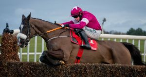 Don Cossack has been ruled out of Punchestown with a tendon injury. Photograph: Morgan Treacy/Inpho
