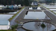 "The Vartry Reservoir in County Wicklow where a 153-year-old tunnel at Callow Hill is a ""very vulnerable part"" of the water supply system for the capital, according to the Environmental Protection Agency.  Cyril Byrne / THE IRISH TIMES"