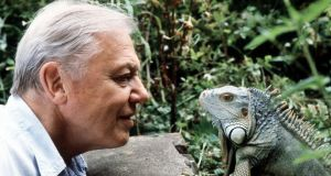 David Attenborough has seen far more than perhaps anyone else alive, and is still eager to see more