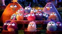 Meet the Irish director of the Angry Birds Movie