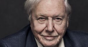 David Attenborough: the nature documentarian has seen more than perhaps anyone else alive, and yet is still eager to see more – therein lies his genius. Photographer: Sarah Dunn