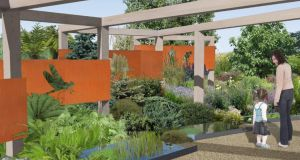 An artist's impression of the evolutionary garden.  Illustration by garden plan co-designer, Nicola Haines of Tierney Haines Architects