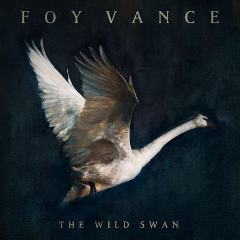 Image result for Foy Vance - The Wild Swan